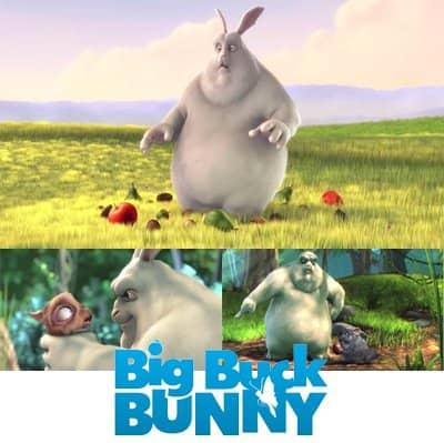 big buck bunny - 2houses