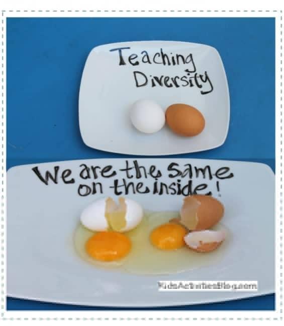 egg activity for diversity - 2houses