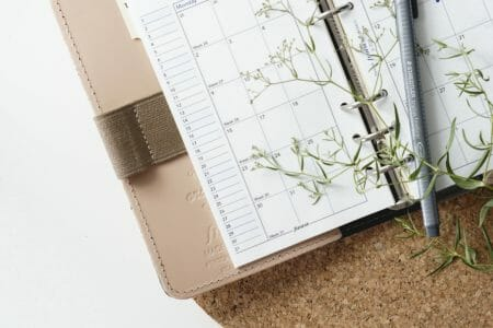 Custody Calendar template